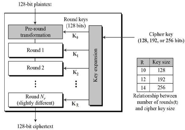 Struktur AES