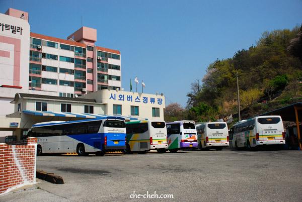 Terminal bus jinhae