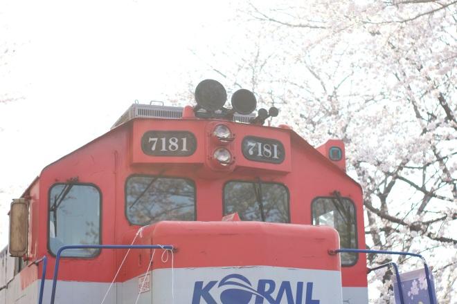 Kereta yang tak pernah lelah melayani kealayan pengunjung